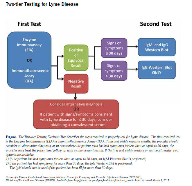Figure. The Two-tier Testing Decision Tree