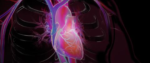Cardiology - Mayo Clinic Laboratories